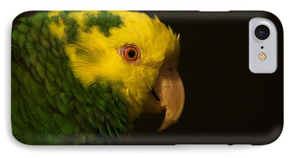 IPhone Case featuring the photograph Fred The Amazon Parrot by Melissa Messick
