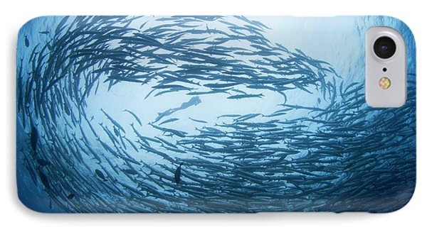 Free Diver In School Of Barracuda IPhone Case by Scubazoo