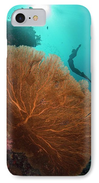 Free Diver Swimming Over Sea Fan IPhone Case by Scubazoo