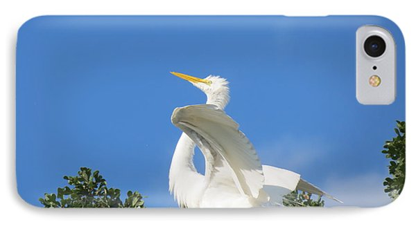 Free To Fly IPhone Case by Feva  Fotos