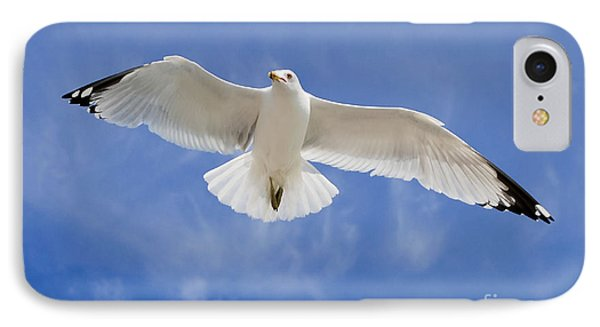 IPhone Case featuring the photograph Freedom Soar by Gina Savage