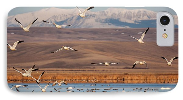 IPhone Case featuring the photograph Freeze Out Lake Morning by Jack Bell