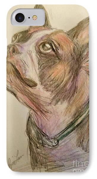 French Bull Dog IPhone Case by Lyric Lucas