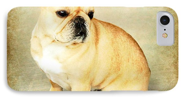 IPhone Case featuring the photograph French Bulldog Antique by Barbara Chichester