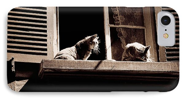 French Windowsill Cats In The Sun IPhone Case by Menega Sabidussi