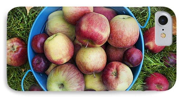 Fresh Apples IPhone Case by Elena Elisseeva