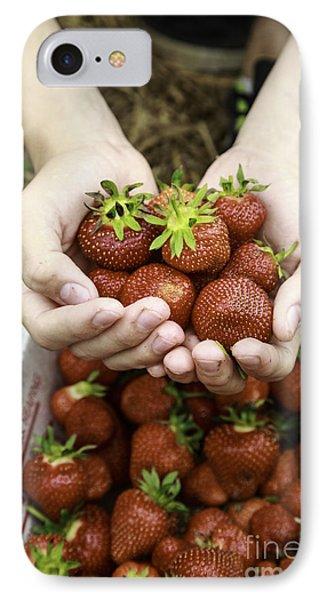 Fresh Picked Strawberries IPhone Case by Edward Fielding