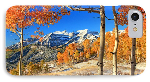 Fresh Snow In The Aspens. IPhone Case by Johnny Adolphson