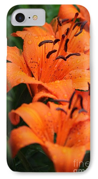 Freshly Showered Tiger Lilys IPhone Case