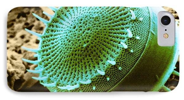 Freshwater Diatom, Sem Phone Case by Asa Thoresen