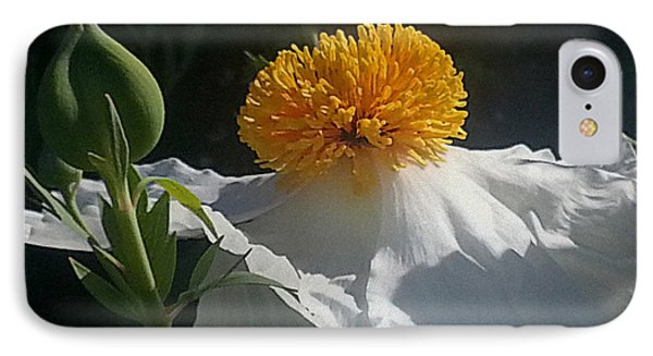 Fried Egg Poppies In The Air IPhone Case by Suzy Piatt