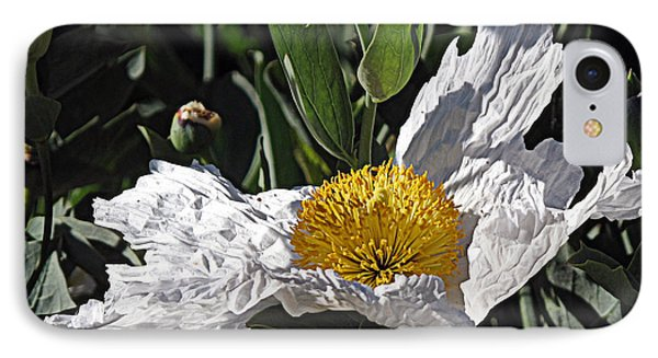 IPhone Case featuring the photograph Fried Egg Poppy by Suzy Piatt