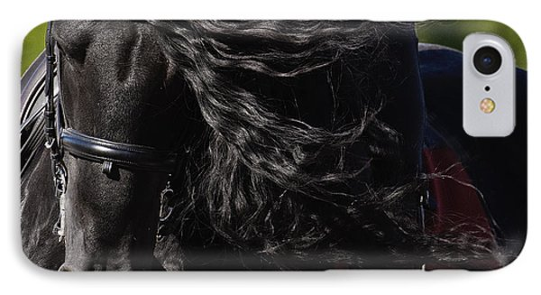 Friesian Beauty IPhone Case by Wes and Dotty Weber