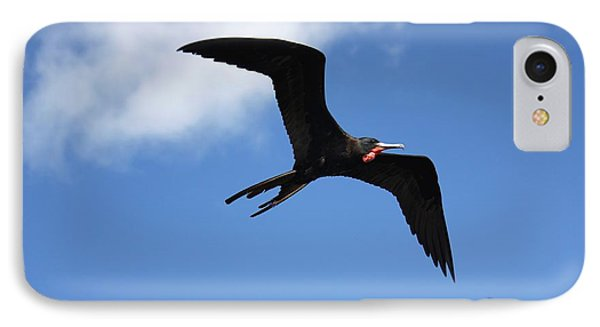 Frigate Bird In Flight Phone Case by Sophie Vigneault