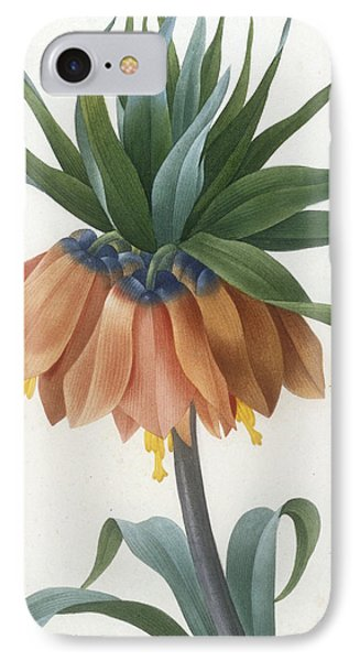 Fritillaire Imperiale IPhone Case by Pierre Joseph Redoute