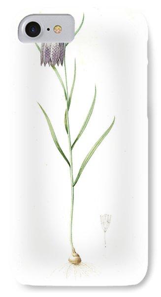 Fritillaria Meleagris, Fritillaire Pintade Snakehead IPhone Case