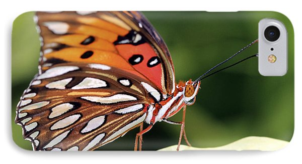 Fritillary Butterfly Phone Case by Pamela Gail Torres