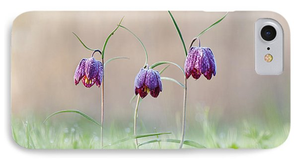 Fritillary Morning Phone Case by Tim Gainey
