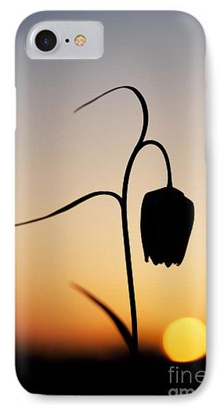 Fritillary Sunset IPhone Case