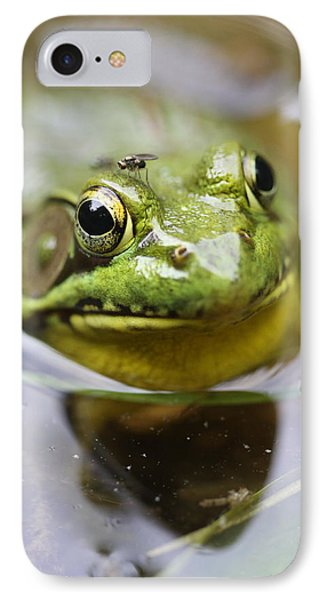 Frog And Fly IPhone Case by Brian Magnier