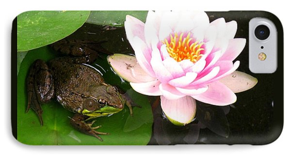 Frog And Lily Phone Case by Debbie Finley