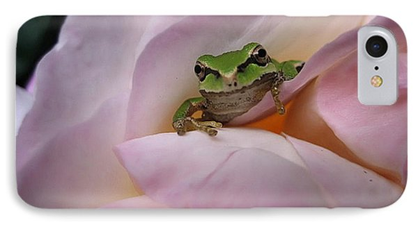 Frog And Rose Photo 1 IPhone Case by Cheryl Hoyle