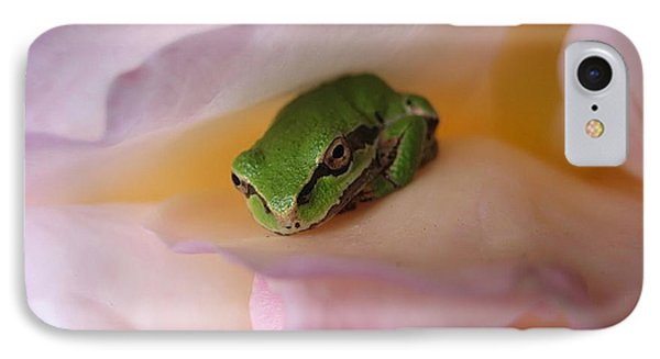 Frog And Rose Photo 2 IPhone Case by Cheryl Hoyle