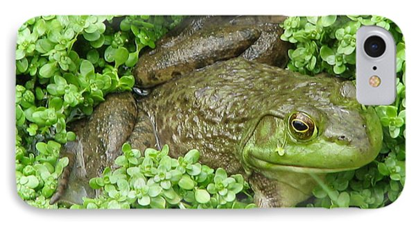 Frog IPhone Case by DejaVu Designs