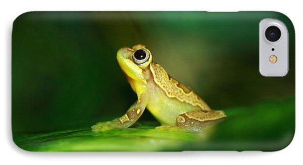 Frog Dreams Phone Case by Paul Slebodnick