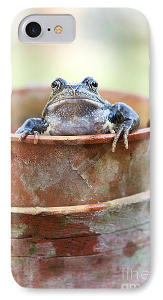 Frog In A Pot IPhone Case by Tim Gainey