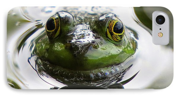 IPhone Case featuring the photograph Frog Kiss by Dianne Cowen