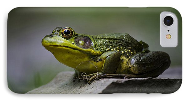 Frog Outcrop Phone Case by Christina Rollo
