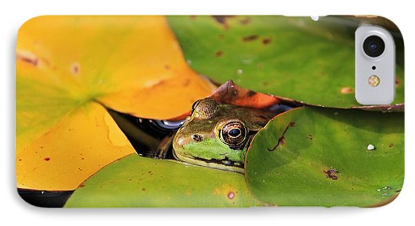 Frog Pond 3 IPhone Case