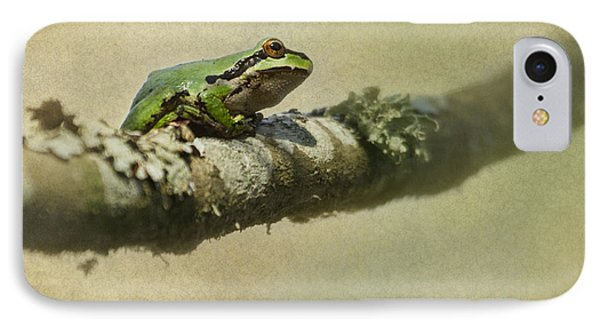 Frog Up A Tree IPhone Case by Angie Vogel