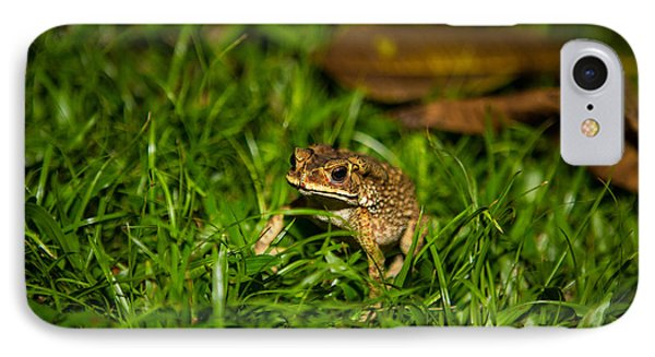 Froggie IPhone Case by Mike Lee