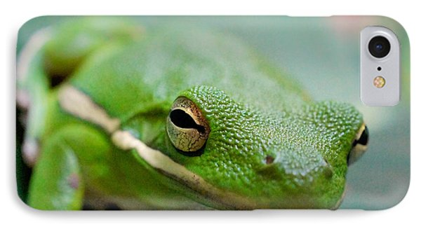 Froggy Smile Squared IPhone Case by TK Goforth