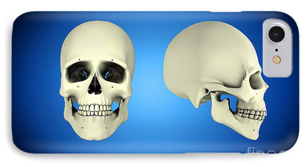 Front View And Side View Of Human Skull Phone Case by Stocktrek Images