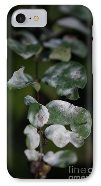IPhone Case featuring the photograph Frost Coloured Leaves by Amanda Holmes Tzafrir