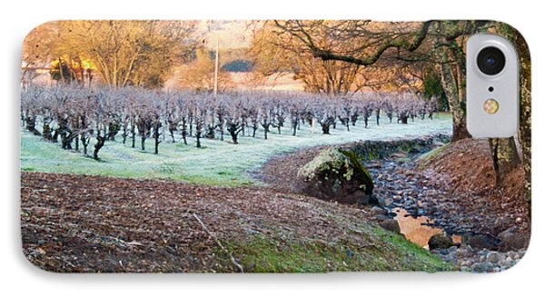 Frost In The Valley IPhone Case