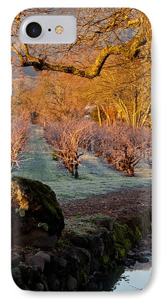 Frost In The Valley Of The Moon Phone Case by Bill Gallagher