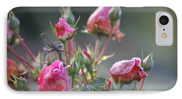 Frost Kissed Roses IPhone Case