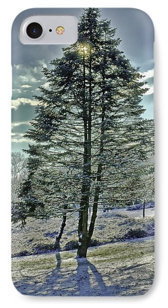 Frost On Pine Tree IPhone Case by Gary Slawsky