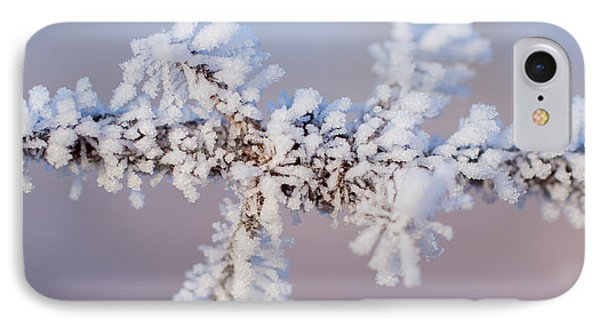Frosted Barbs IPhone Case by Julie Clements