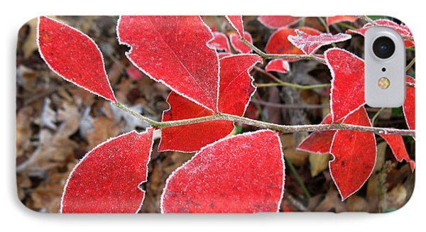 Frosted Blueberry Leaves IPhone Case