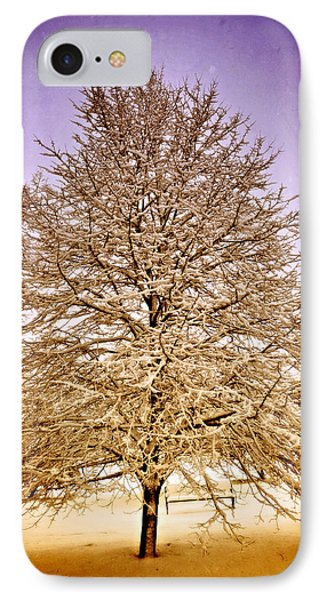 Frosted Branches Phone Case by Marty Koch