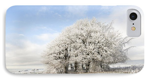 Frosted Copse IPhone Case by Anne Gilbert
