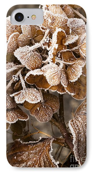 Frosted Hydrangea Phone Case by Anne Gilbert