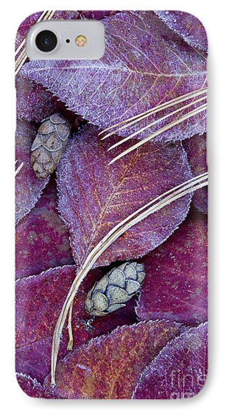 Frosted Leaves IPhone Case by Alan L Graham