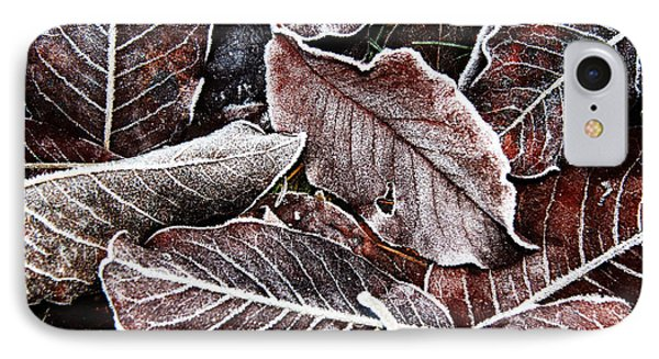 Frosted Leaves IPhone Case by John Bushnell