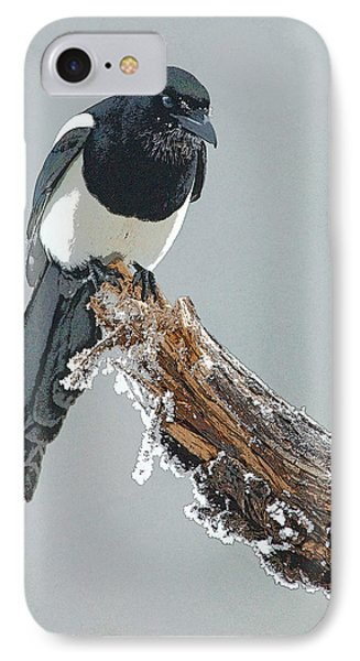 Frosted Magpie- Abstract IPhone 7 Case by Tim Grams